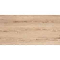 38454 Dub Padwa brezový
