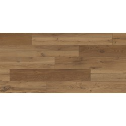 SP40 Oak Orewa
