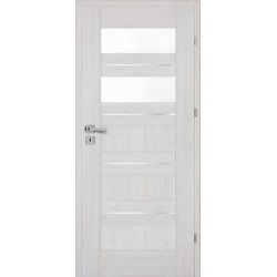 Interiérové dvere Centurion Inox S5/R
