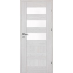 Interiérové dvere Centurion Inox S5/S