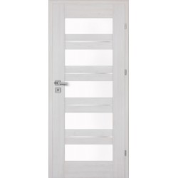 Interiérové dvere Centurion Inox S5/D