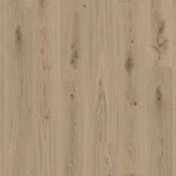 TARKETT 36020004 Delicate Oak Natural