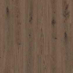 TARKETT 36020006 Delicate Oak Brown