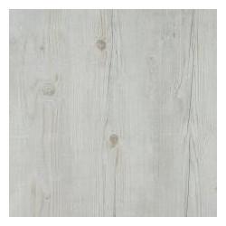 35998003 Borovica vyblednutá biela