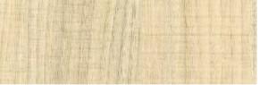 Fólia 3D Orech biely